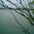 z  滋賀県 草津市 平湖