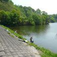 n2 香川県 まんのう町 新池