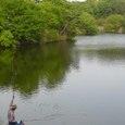 n4 香川県 まんのう町 新池