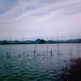 w1 滋賀県 守山 5号水路