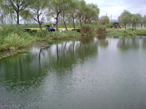 s2 滋賀県 今津 貫川(ぬけがわ)