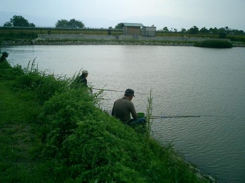 x2 滋賀県 草津市 志那の池