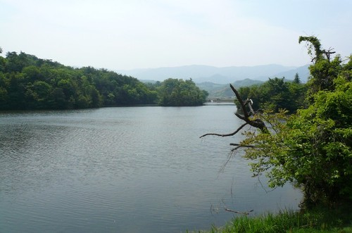 n1 香川県 まんのう町 新池