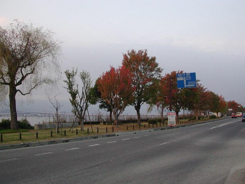20081116c
